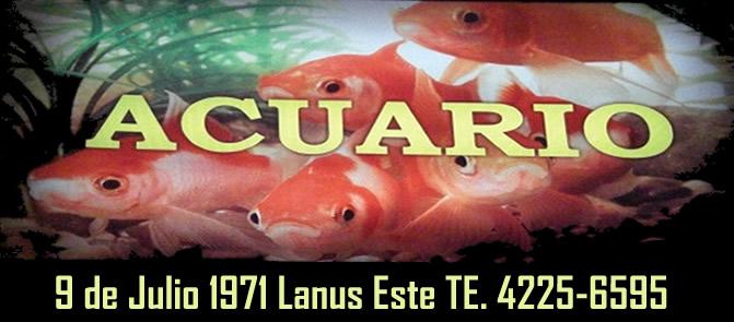 Acuario en lanus viveros en lanus for Muebles 9 de julio lanus